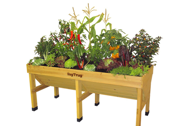 Grow Your Own Meal Endless Food Supply With Our Vegtrug
