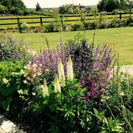 Part of my garden I have built in the last year this is part of the cottage border. Debbie Curtis