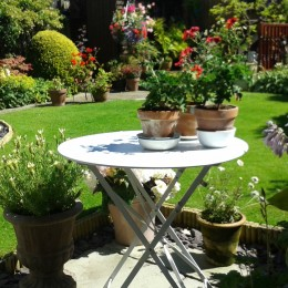 My beautiful garden filled with plants from Perrywood. Denise Banks