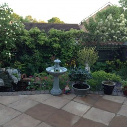 This my back garden, which has a lot of different flowers, shrubs in, i.e. snowball tree in left corner, and trailing hydrangea, clematis, rose, hydrangea. To the left a pond with waterfall. Denise Davies