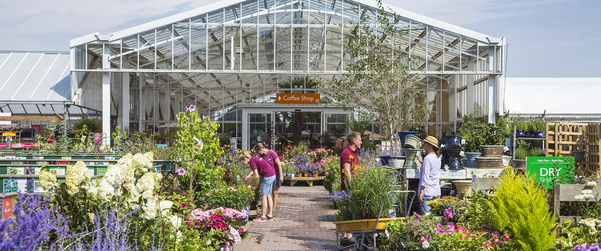 No. 4 in the Garden Centre Association league table of top 100 UK garden centres