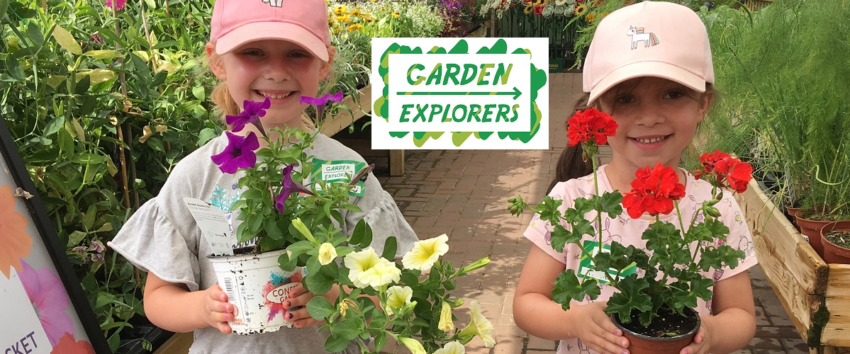 Helping children to be curious about trees or plants, birds or insects