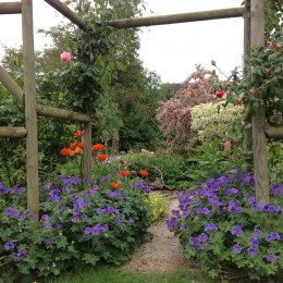 Photo was taken in early June, with veggie patch behind me looking through the rose arch toward the house. The garden is now in its eighth year, full of all things gorgeous and I just love it! Jane Rutterford