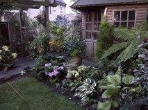 The garden was hard landscaped 2 years ago but I have done all the planting. Julie Ponsford