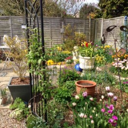 Our adult garden after many years of designing around our children! Karen & Corum Dixey