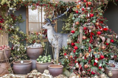 Visit Our Christmas Shop For A Magical Experience Perrywood