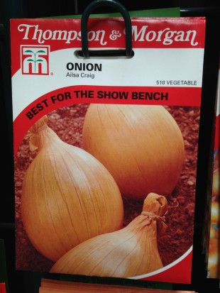 Onion seed 'Ailsa Craig' available at Perrywood
