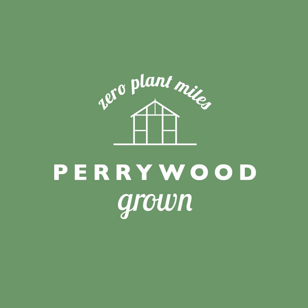 Perrywood-Grown-Logo-Green