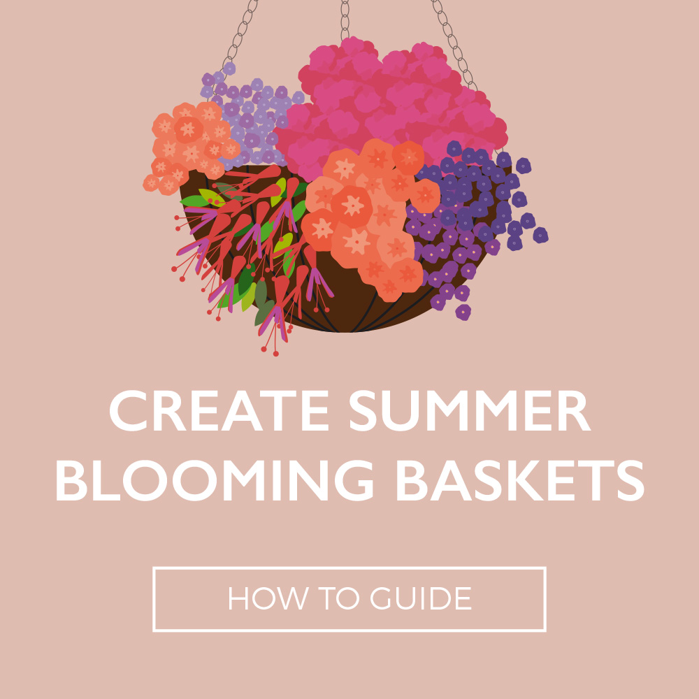 Perrywood – Summer Blooming Baskets