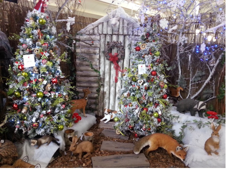 Perrywood's Visual Display Merchandiser talks Christmas themes and ...