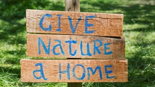 RSPB Give Nature A Home campaign