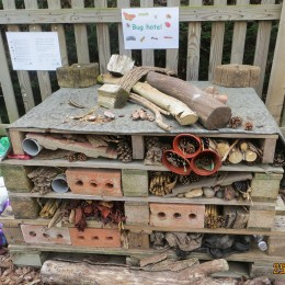 Our homemade bug hotel! Samuel and Sophia Reade