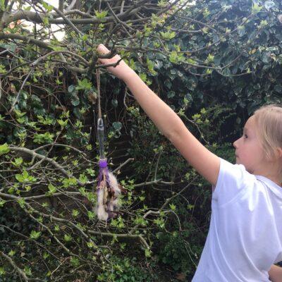 step 4 - hanging bird nest whisk in the garden to help nesting birds