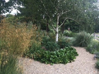 The new dry garden at Writtle University College