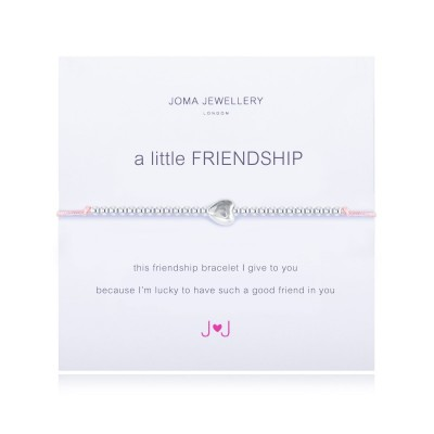 a-little-friendship