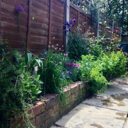 I have a courtyard style garden that's south facing. The border in the photo is planted with herbs, roses, & hardy perennials; climbing fuchsia, aquilegia, aliums & anemones. Carole Kerton-Church