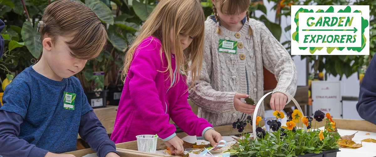 Tiptree - Helping children to be curious about trees or plants, birds or insects