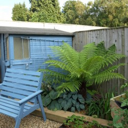 Paint a boring shed or chair and make it a feature - from Nathalie