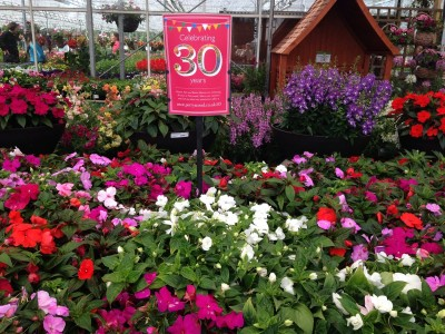 30th anniversary offers at Perrywood