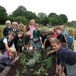 Raised beds for Great Totham School